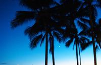 ハワイでのフォトウエディングはこんなふたりにおすすめ!