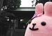 縁結びの有名パワースポット「東京大神宮」で試食会に行ってきた!