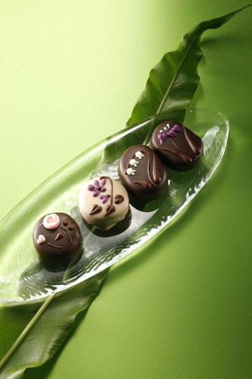 マダム セツコ「季節の花のチョコレート」