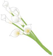 p01_bouquet01