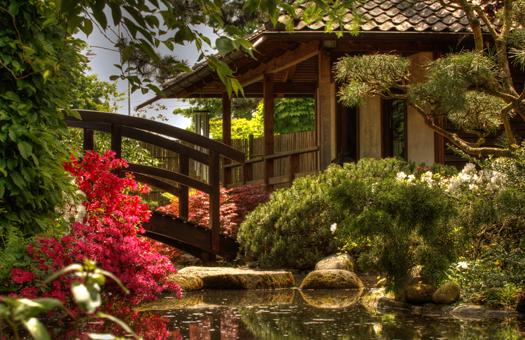 日本庭園を望みながら