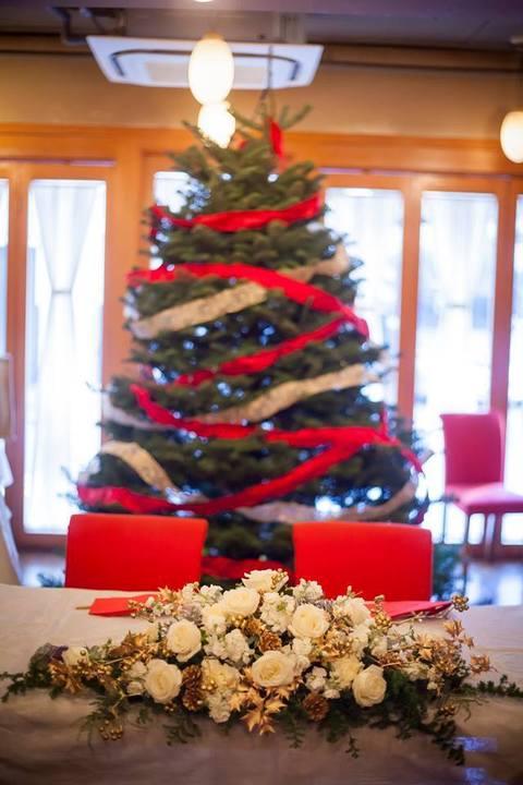 クリスマスウェデイングは、本物の生のもみの木、オレゴン州から毎年特注しています
