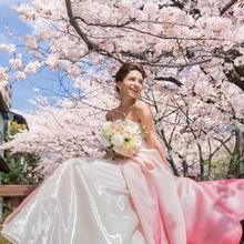 鴨川沿いの桜がおふたりを祝福