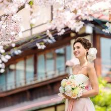 桜が咲き誇る京都で叶える春婚