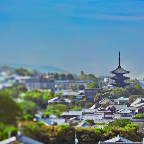 高台寺や八坂の塔のすぐそばに広がる、雅趣あふれる非日常空間が舞台。