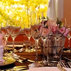 秋は一面銀杏の風景と共に