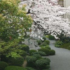 大人気和庭園
