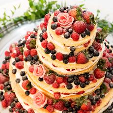 ネイキッドケーキ