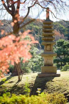 横浜 結婚式 庭園 ウェディング 三渓園 写真 秋