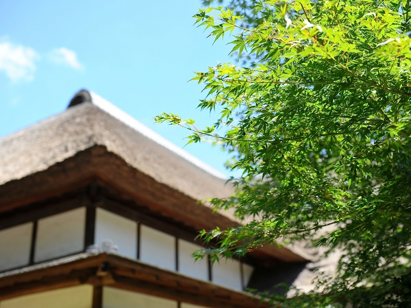 横浜 ウェディング 三渓園 ガーデン