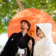 鎌倉宮 神前式 ご家族の結婚式