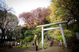 近隣の神社で挙式