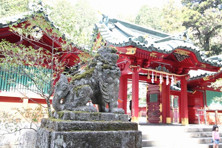 箱根神社 結婚式 神前式 披露宴 アルベルゴバンブー