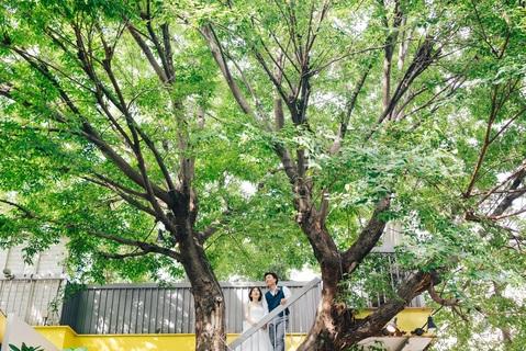 まるで森林浴をしているかの様な空間で結婚式