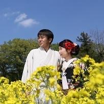 菜の花畑で和装の前撮り