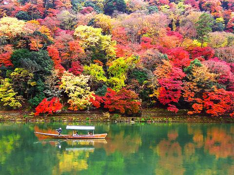 秋には燃えるような紅葉に包まれる嵐山。ゆっくり観光もできて、ご遠方のゲスト様にもおすすめです。