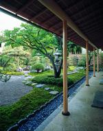 京都嵐山 京料理 とりよね 結納・顔合わせ