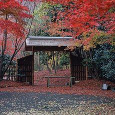 京都 料亭 食事会