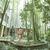 竹林の庭は和装にも相応しい