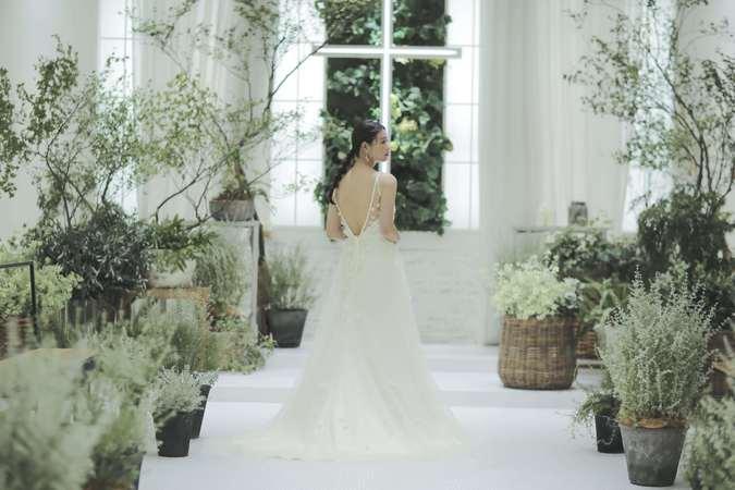 TVB【ティヴビー】の画像