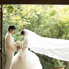 世界遺産の森に囲まれたチャペルはドレスがより一層綺麗に!