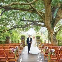 【大人気】シンボルツリーの下で愛を誓うガーデンウエディング!