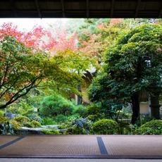 四季により色を変える庭園