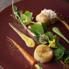 帆立貝と赤甘鯛 栗カボチャと緑豆のソース