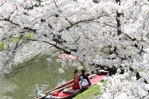 龍城神社【TATSUKI WEDDING】の画像
