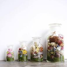 【pele plants and flowers】
